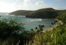 Top 5 Things To Do in Oahu, Hawaii