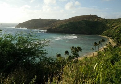 Top 5 Things To Do in Oahu, Hawaii