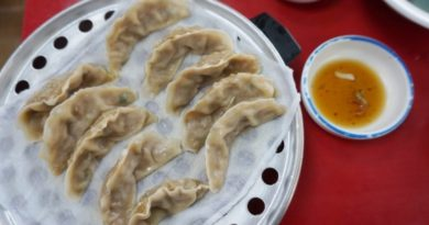 Mapo Dumpling (Hongdae, Korea) – Quick Affordable Mandu